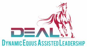 Equus Coaching DEAL